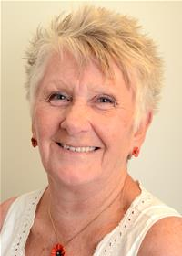 Councillor Details Jan Curtice City And County Of Swansea
